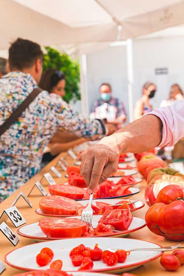 Els-Magazinos-presentará-en-Alicante-Gastronómica-su-proyecto-El-mejor-tomate-de-la-Marina-1a